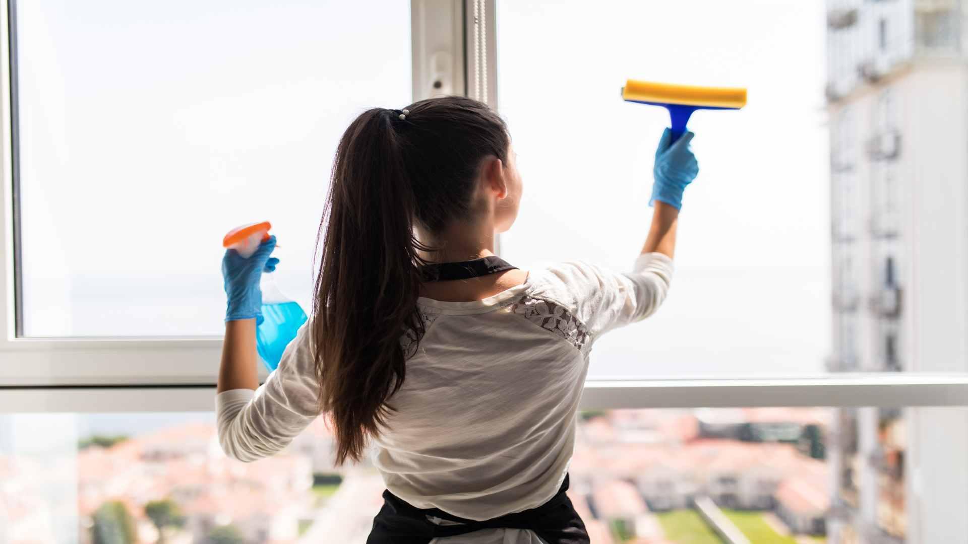 עובדת זרה המועסקת במשק בית